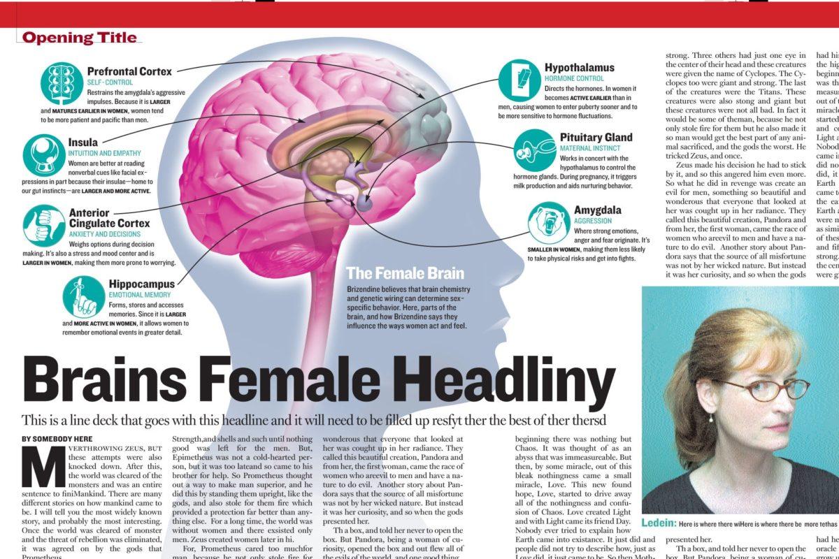 dimorfismo sessuale cerebrale e differenze di genere